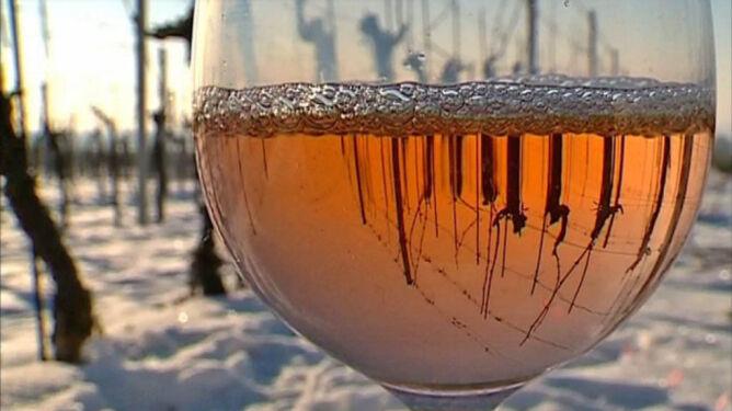 Kosztowne wino ze zmrożonych winogron