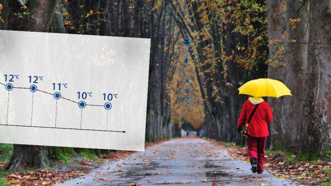 Weekend w kratkę, we Wszystkich Świętych miejscami intensywny deszcz