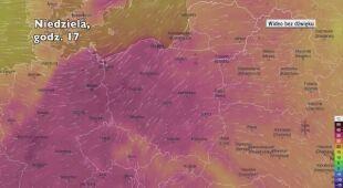Temperatura w ciągu w kolejnych pięciu dni (Ventusky.com)