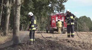 Pożar ścierniska w okolicy miejscowości Kosobudy
